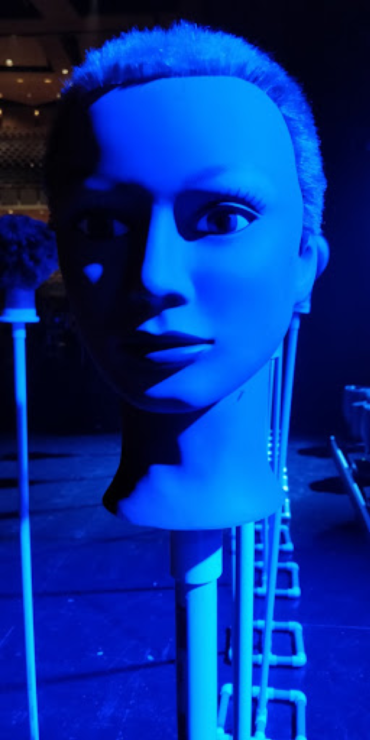 mannequin, head, lighting, aim, stand-in,